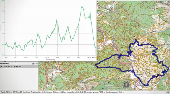 Hallenbergmarathon